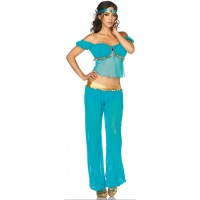 Arabian Beauty Womens Costume